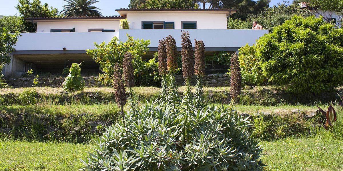 Cottage Hotel Gallo Nero